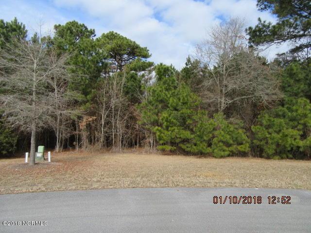 100 Cumberland Street, Newport, NC 28570 (MLS #100126046) :: David Cummings Real Estate Team