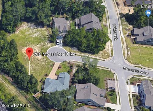 206 Moss Tree Drive, Wilmington, NC 28405 (MLS #100127268) :: Coldwell Banker Sea Coast Advantage