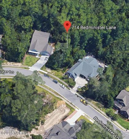 714 Bedminister Lane, Wilmington, NC 28405 (MLS #100127298) :: Coldwell Banker Sea Coast Advantage