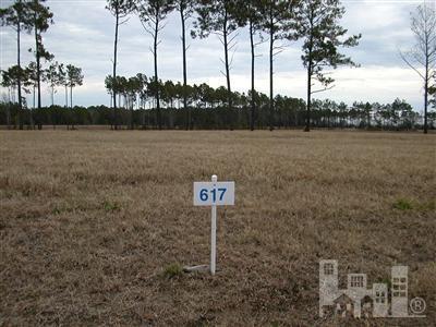 191 Spicer Lake Drive, Holly Ridge, NC 28445 (MLS #100128417) :: Terri Alphin Smith & Co.