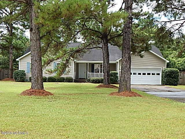 202 Bluebird Court, Sneads Ferry, NC 28460 (MLS #100128791) :: Coldwell Banker Sea Coast Advantage