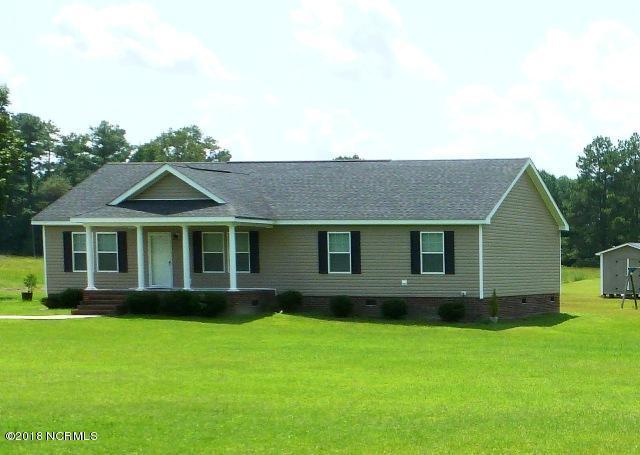 230 Sandlin Road, Beulaville, NC 28518 (MLS #100129142) :: Courtney Carter Homes