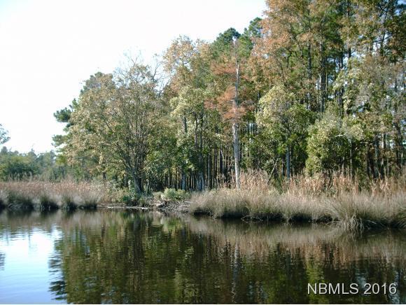 44 Lancaster Lane, Merritt, NC 28556 (MLS #100129478) :: RE/MAX Essential