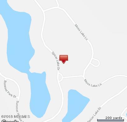 219 Spicer Lake Drive, Holly Ridge, NC 28445 (MLS #100129538) :: Terri Alphin Smith & Co.