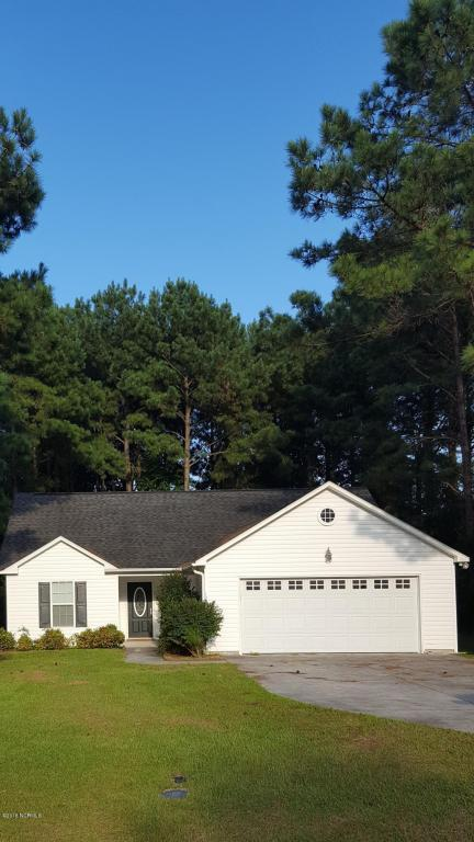 123 Charles Creek Road, Sneads Ferry, NC 28460 (MLS #100130207) :: Courtney Carter Homes