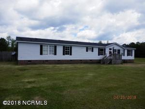 207 Tierce Lane, Maysville, NC 28555 (MLS #100132812) :: RE/MAX Elite Realty Group