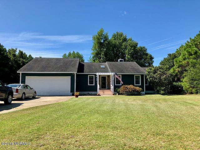 118 Silver Creek Landing Road, Swansboro, NC 28584 (MLS #100132875) :: Coldwell Banker Sea Coast Advantage
