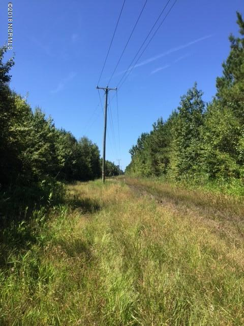 205 War Tom Road, Aulander, NC 27805 (MLS #100134386) :: The Keith Beatty Team