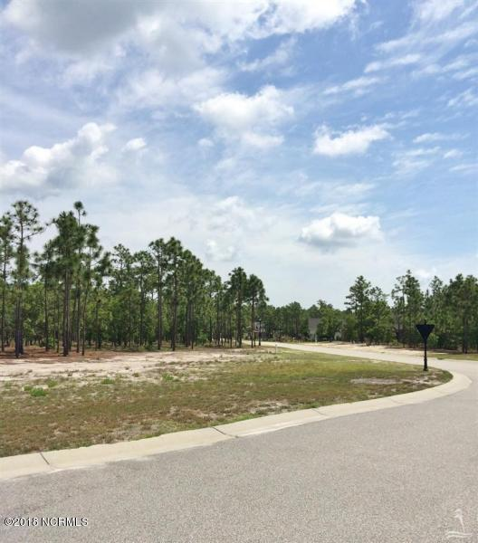 3582 Wood Crest Lane, Southport, NC 28461 (MLS #100135861) :: The Keith Beatty Team
