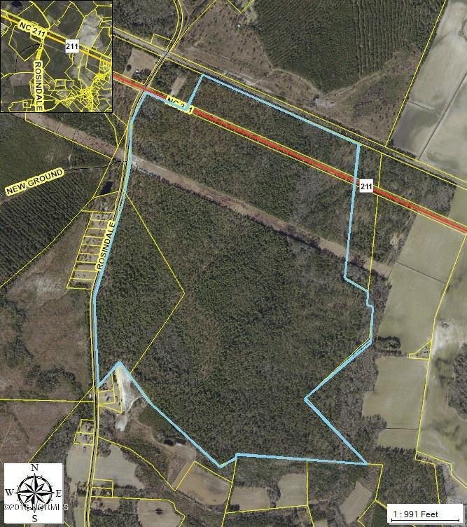 405 Acres Rosindale Road - Photo 1
