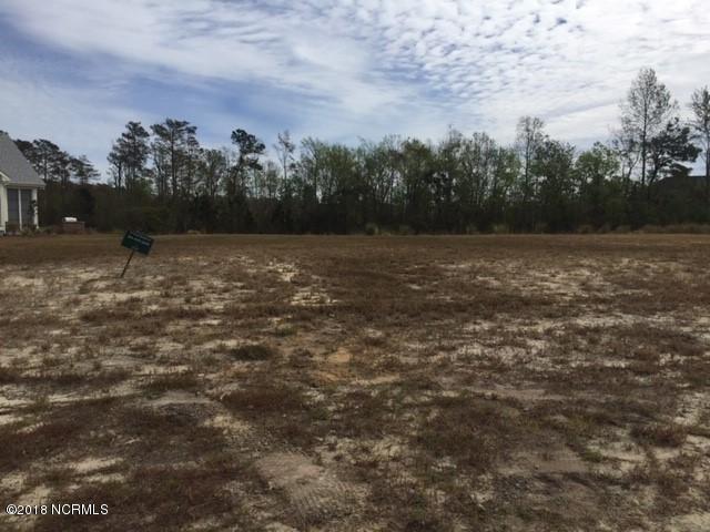 1308 Star Grass Way, Leland, NC 28451 (MLS #100137880) :: Donna & Team New Bern