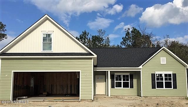 113 Maxwell Drive, Rocky Point, NC 28457 (MLS #100138773) :: RE/MAX Essential
