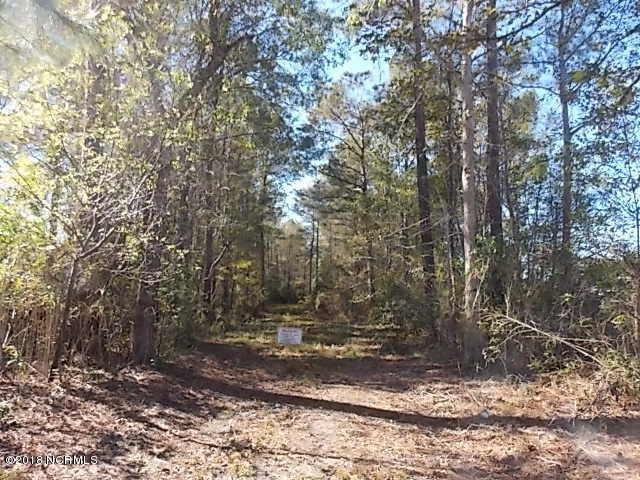 117 Buckskin Drive, Maysville, NC 28555 (MLS #100140613) :: Courtney Carter Homes