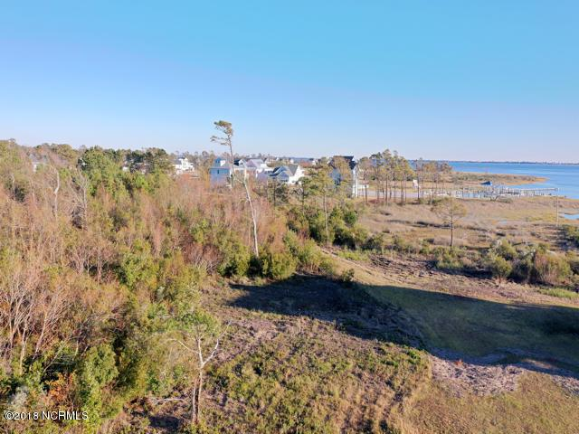 607 Trawler Place, Newport, NC 28570 (MLS #100142122) :: Carolina Elite Properties LHR