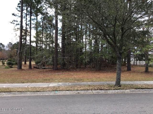 1517 Grandiflora Drive, Leland, NC 28451 (MLS #100144007) :: Chesson Real Estate Group