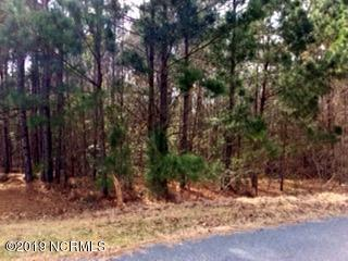 1894 Sunset Cove Drive SE, Bolivia, NC 28422 (MLS #100149786) :: Lynda Haraway Group Real Estate