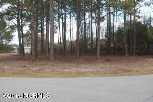 107 Mainsail Drive, Sneads Ferry, NC 28460 (MLS #100149822) :: Castro Real Estate Team