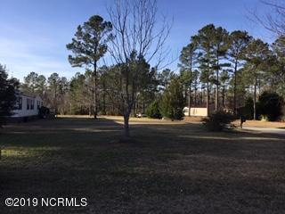 161 Bellhammon Forest Drive, Rocky Point, NC 28457 (MLS #100151012) :: Courtney Carter Homes
