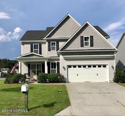 401 Lady Bug Lane, Wilmington, NC 28411 (MLS #100151785) :: Coldwell Banker Sea Coast Advantage