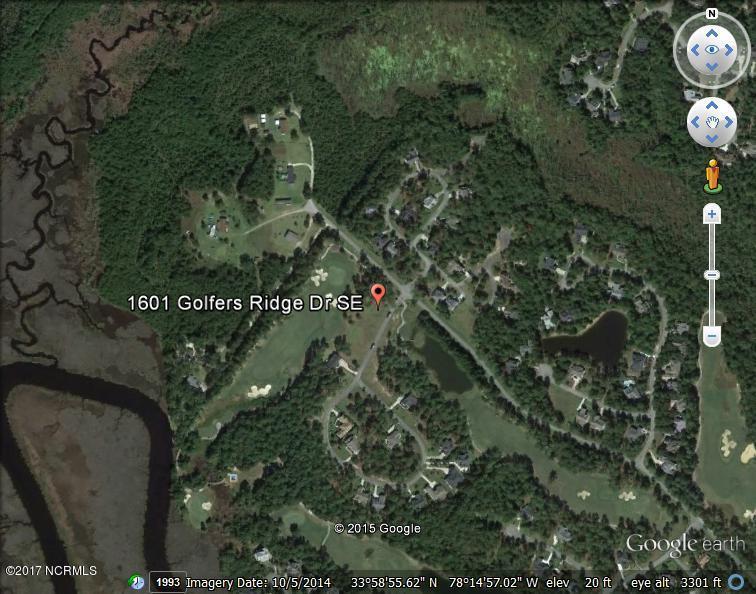 1601 Golfers Ridge Drive - Photo 1