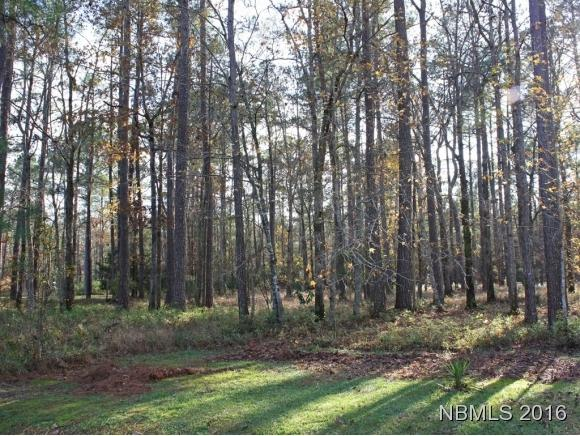109 Spinnaker Point Road N, Oriental, NC 28571 (MLS #100153128) :: RE/MAX Essential
