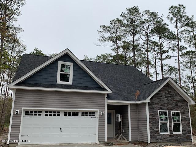 115 Waterford Way, Maysville, NC 28555 (MLS #100154083) :: RE/MAX Elite Realty Group