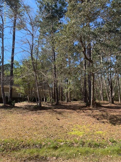 221 Crooked Gulley Circle, Sunset Beach, NC 28468 (MLS #100154877) :: Donna & Team New Bern