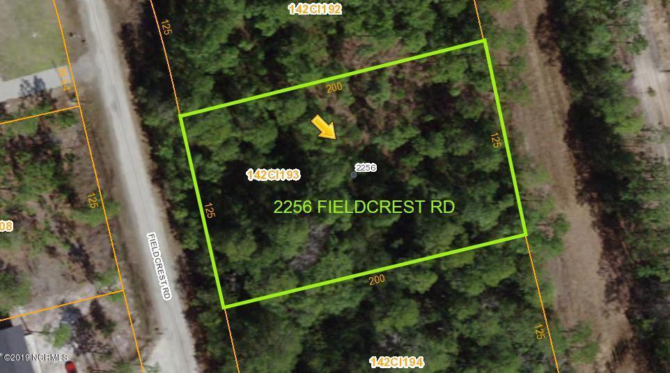 2256 Fieldcrest Road - Photo 1