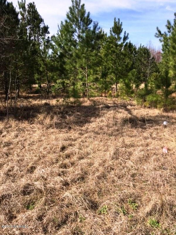 4.92 Nc-24 Highway, Beulaville, NC 28518 (MLS #100155548) :: Courtney Carter Homes