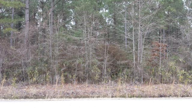 0 Pamlico Beach Road - Photo 1