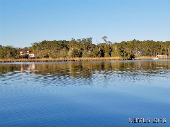 225 Baird Point Road, Grantsboro, NC 28529 (MLS #100156889) :: Donna & Team New Bern