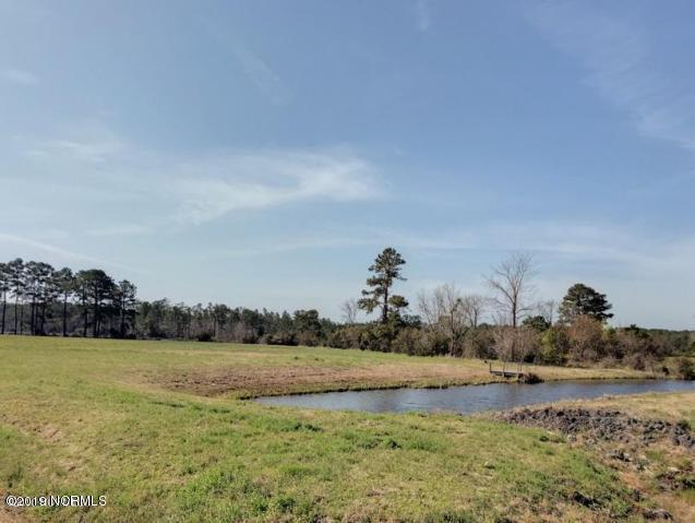 202 Settlement Lane, Newport, NC 28570 (MLS #100158259) :: Courtney Carter Homes
