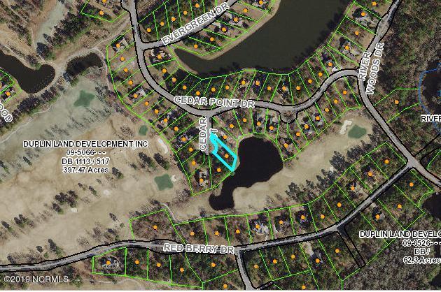 109 Cedar Court, Wallace, NC 28466 (MLS #100158722) :: Donna & Team New Bern