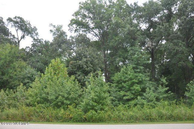 7865 Briar Creek Road, Rocky Mount, NC 27803 (MLS #100159049) :: Lynda Haraway Group Real Estate