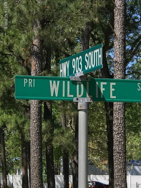 12 Wildlife Street, La Grange, NC 28551 (MLS #100160749) :: Courtney Carter Homes
