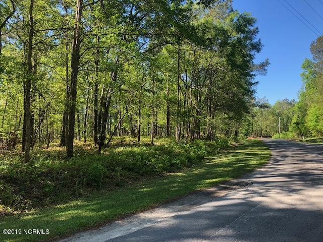 00 Elizabeth Road, Minnesott Beach, NC 28510 (MLS #100161735) :: RE/MAX Essential
