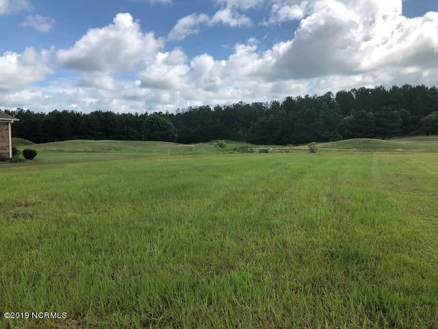 183 Sir Walter Court, Hampstead, NC 28443 (MLS #100164521) :: The Oceanaire Realty