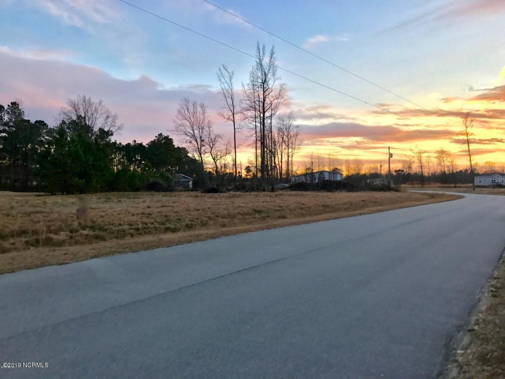 213 Mewborn Drive - Photo 1