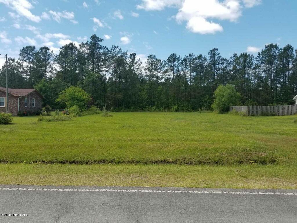 0 Fennell Town Road - Photo 1