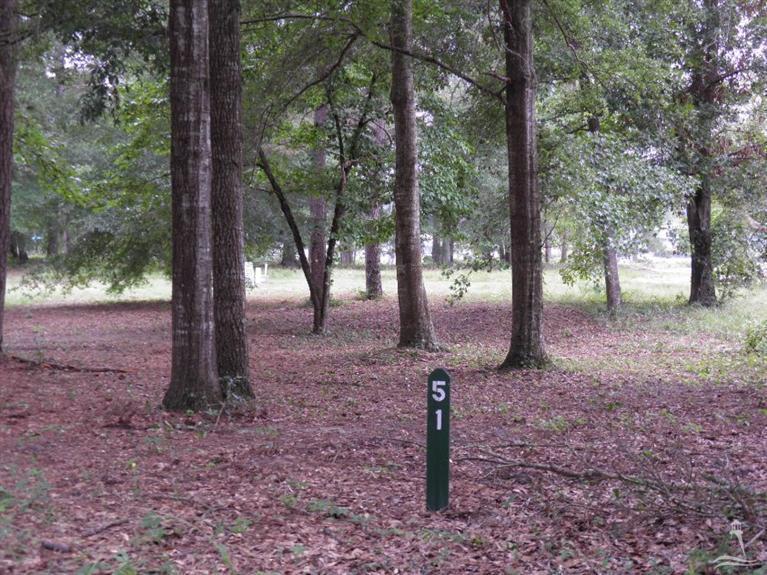 9306 Whisper Park Drive - Photo 1