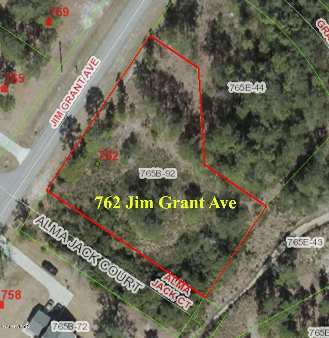 762 Jim Grant Avenue - Photo 1