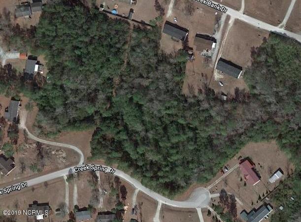 404 Creek Spring Drive, New Bern, NC 28560 (MLS #100168517) :: The Bob Williams Team