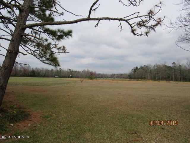115 Oak Hollow Lane, Whiteville, NC 28472 (MLS #100171132) :: The Keith Beatty Team
