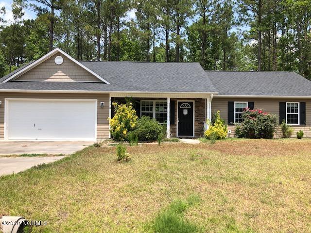 219 Peters Lane, Jacksonville, NC 28540 (MLS #100172605) :: Courtney Carter Homes