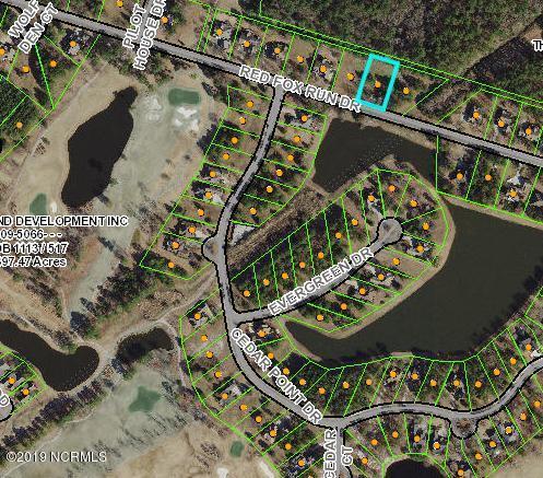 341 Red Fox Run Drive, Wallace, NC 28466 (MLS #100175022) :: Courtney Carter Homes