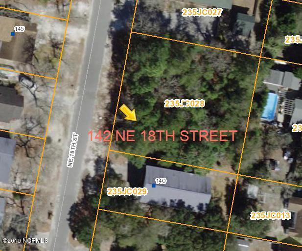 142144 NE 18th Street, Oak Island, NC 28465 (MLS #100175911) :: Donna & Team New Bern
