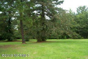 Lot 1a/2a Haskett Road, Kinston, NC 28501 (MLS #100176284) :: The Chris Luther Team