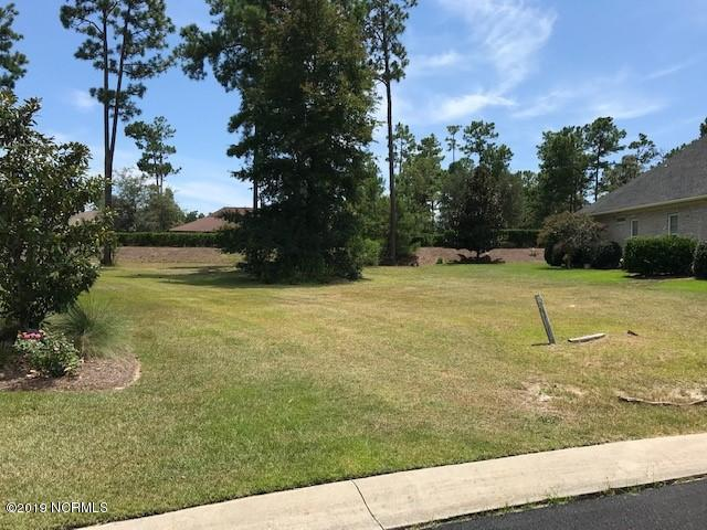 1255 Opaca Drive SE, Bolivia, NC 28422 (MLS #100177786) :: The Cheek Team