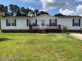 204 Michelle Lane, Maysville, NC 28555 (MLS #100178861) :: RE/MAX Elite Realty Group