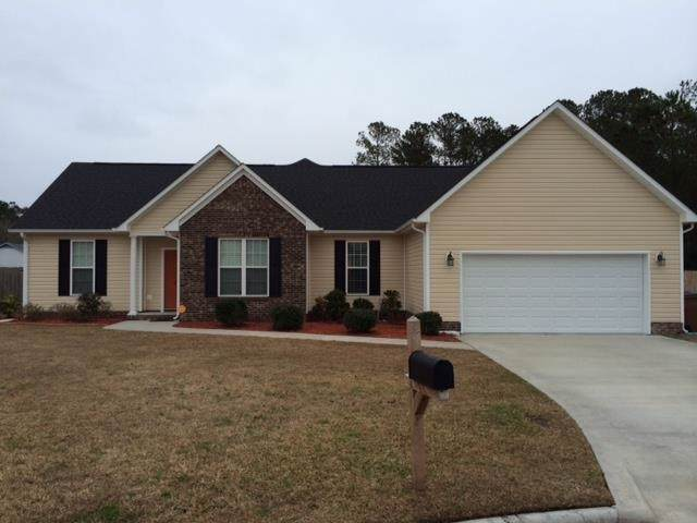222 Stone Point Lane, Jacksonville, NC 28540 (MLS #100181399) :: RE/MAX Essential